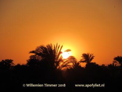 apofyliet.nl - Egypte