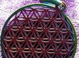apofyliet.nl - flower of life rainbow