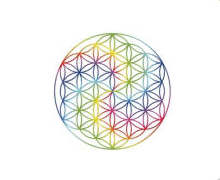 Apofyliet Naam & Logo