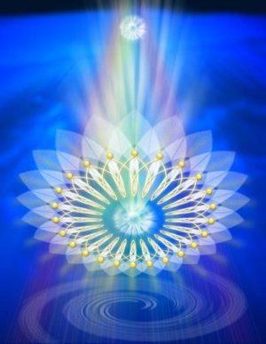 Soul Touch Waar Zielen Elkaar Ontmoeten Spirituele