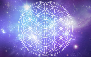 apofyliet.nl - flower of life